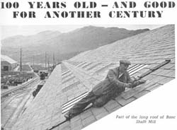 Roof Slates: 100 Years old and good for another century.